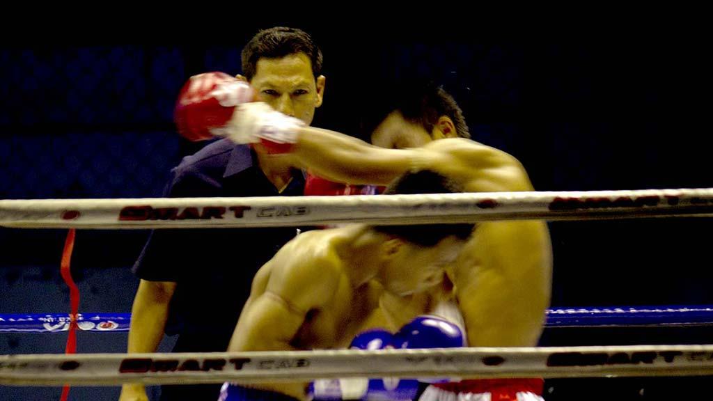 Muay Thai combat.